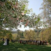 Fall at the outdoor ceremony site