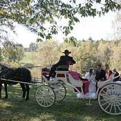 Carriage ride form the ceremony site