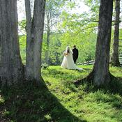 Under the tall oaks on the ceremony site