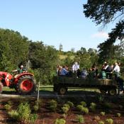 Guests arriving by hayride